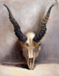 <b>Animal Skull by Nathan Madrid</b>, 2012<br>Oil on linen, 14x11<br>$800