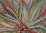 <b>Hot Agave by Karen Neyland</b>, 2012<br>Watercolor, 32x40 inches framed<br>$1500
