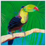 <b>Toucan</b>, 2014<br>Acrylic and oil pastel on canvas, 40x40 inches<br><i>sold</i>