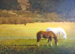 <b>Pasture</b>, 2015<br>Oil on canvas, 30x40 inches<br>$5500