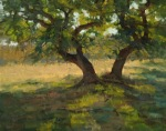 <b>Spring Oak</b>, 2014<br>Oil on canvas, 24x30 inches<br>$4200