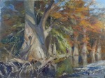 <b>Fall Cypress on the Frio</b>, 2014<br>Oil on linen panel, 30x40 inches<br>$5600