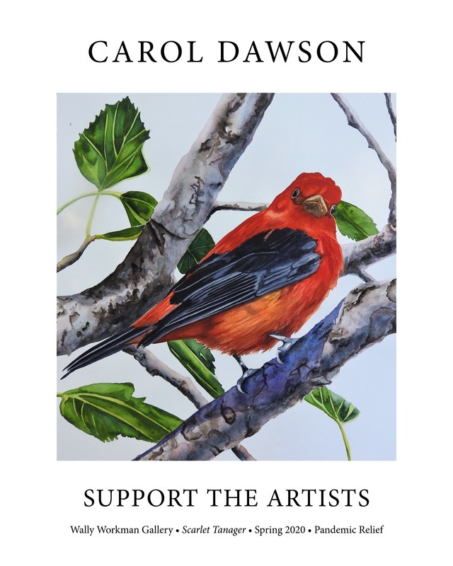 Carol Dawson, Support The Artists poster